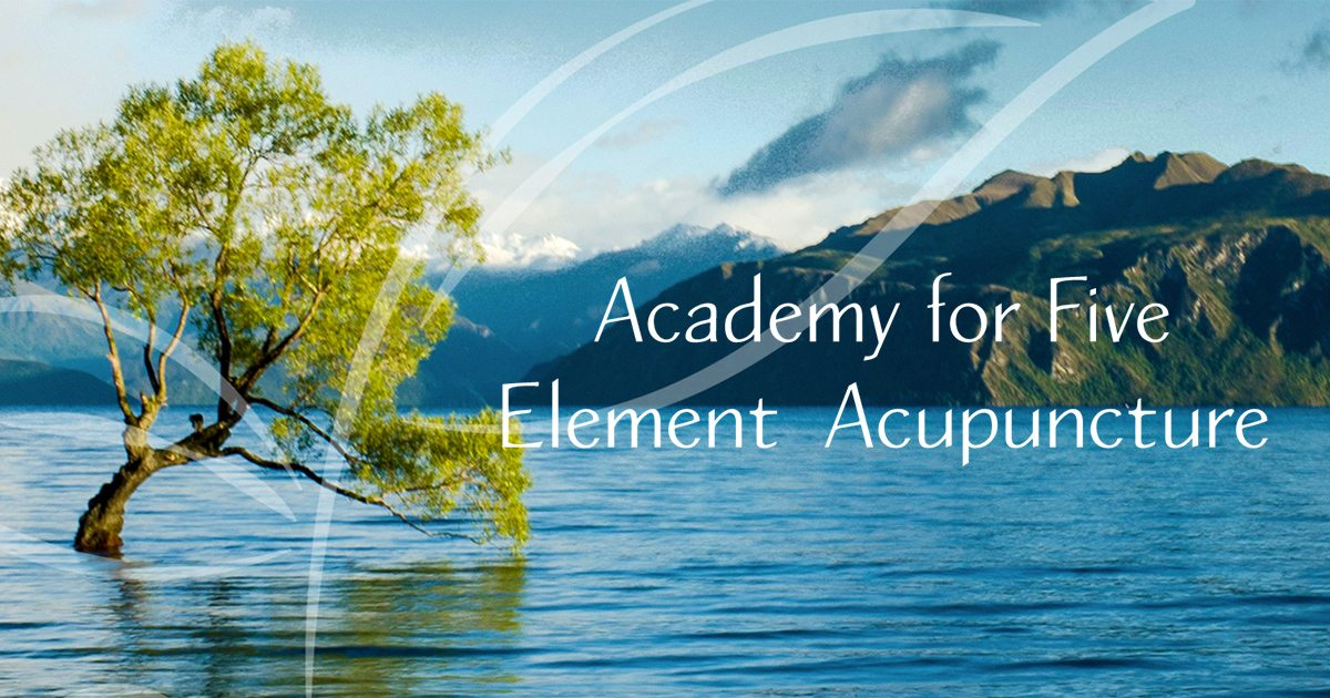 The Elements | Academy for FIve Element Acupuncture