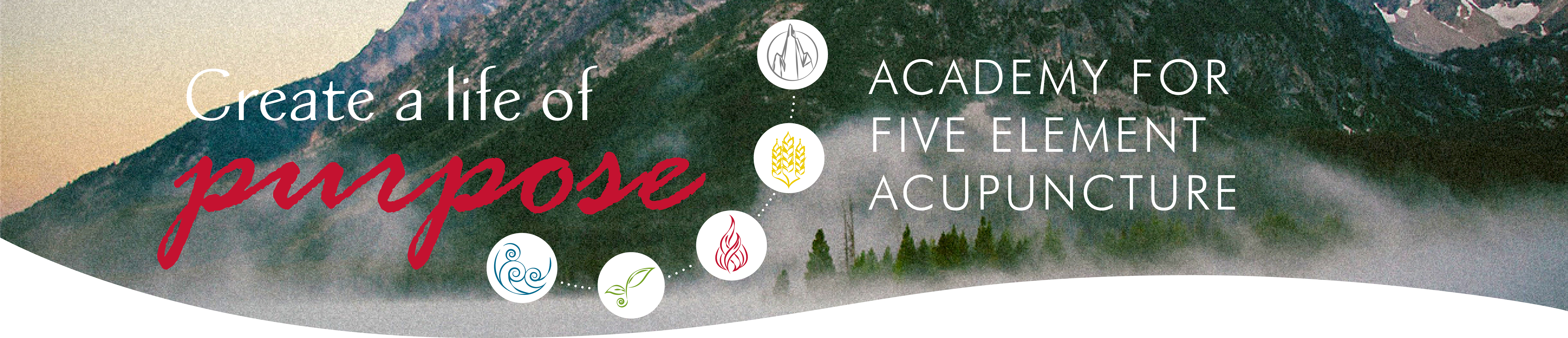 Academy for Five Element Acupuncture